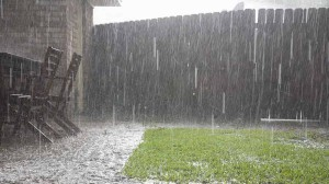 pioggia su prato